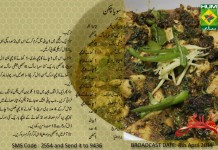 Soya Chicken Zubaida Tariq Recipes on Masala TV Show Handi Urdu Book