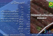 Frozen-Hara-Masala-Seekh-Kabab-Rida-Aftab-Urdu-English-Recipe-Masala-TV-Facebook-Tarka