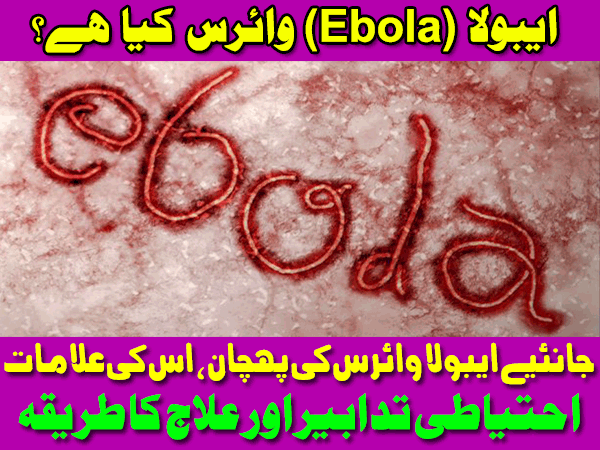 Tips Urdu Ebola Virus Disease Symptoms Care Causes and Treatment Pakistan