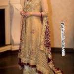 Fashion Trend Long Tail Frock Gown Bridal Dresses 2015 Walima