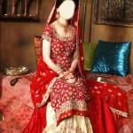 Sharara and Gharara Suit Bridal Wedding Dress Designs 2015