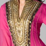 Fancy-Chinese-Collar-Neck-Gala-Designs-Style-2015-for-Kurtis-Shirts-Salwar-Kameez-Embroidered-Pakistan-India