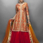 Punjabi Bridal Wedding Suits, Indian Lehenga Choli Dress