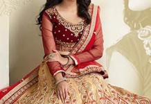 New Designs Fashion 2016 A-line cut Bridal Lehenga design