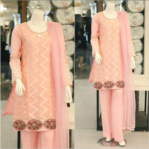 Net Dresses Designs 2017 2018, Net Frocks Gowns, Shalwar Kameez Pink