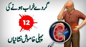 kidney treatment