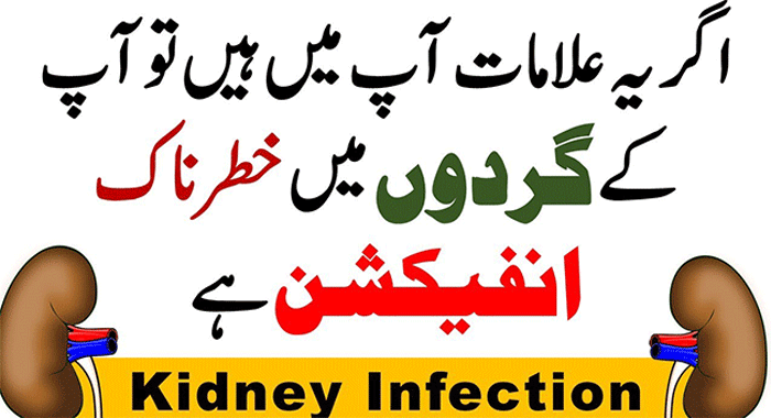 Urinary Tract Infection (UTI) Causes