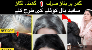Why Hair Starts to Go Gray