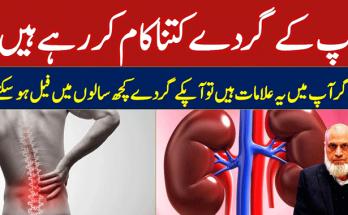 kidney-warning-signs